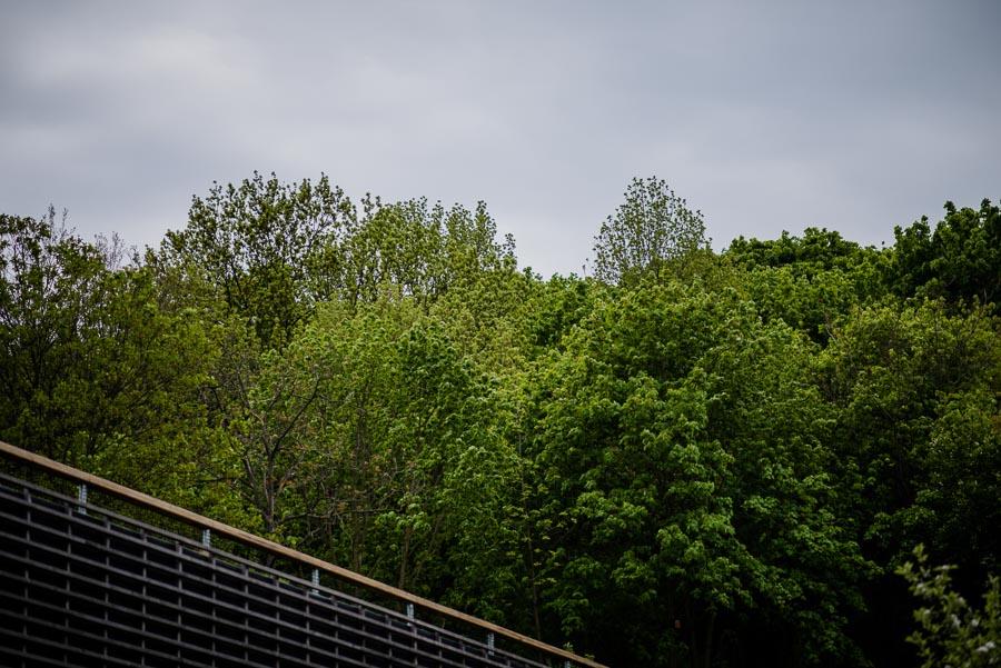 037_Photo_Nejedli_svatebni_fotografie