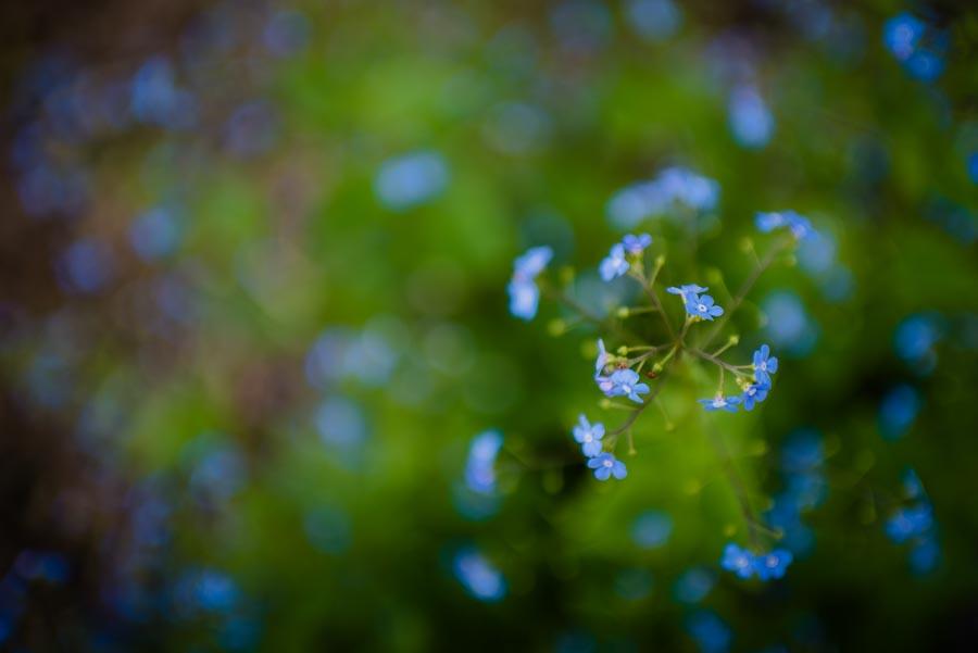 038_Photo_Nejedli_svatebni_fotografie